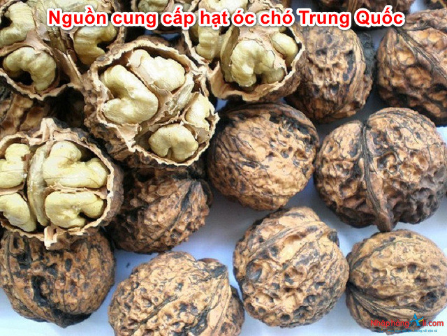 nguon-cung-cap-hat-oc-cho-trung-quoc